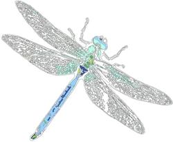 250x 250 Dragonfly